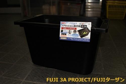 GEX メダカ元気メダカのための飼育箱黒350