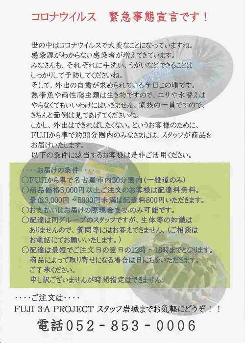 IMG_20200410_0001.jpg