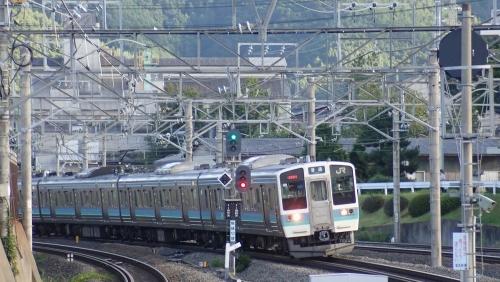 200906P8130733.jpg