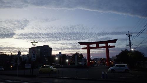 201130PB050211.jpg