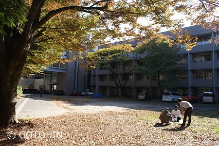 東京藝術大学 デザイン棟