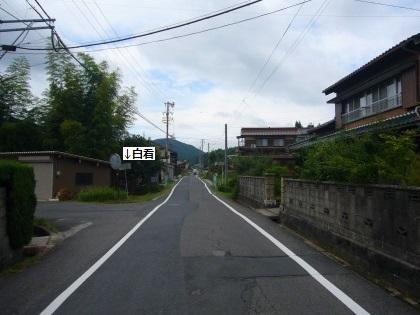 恵那市の白看01