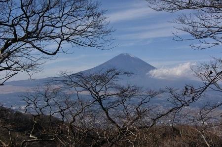 富士山金時201210