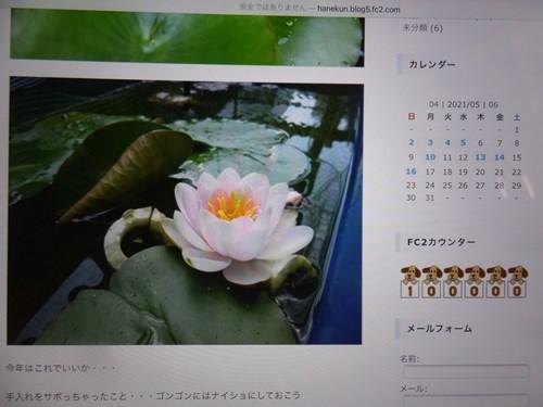 s-DSCF9575.jpg