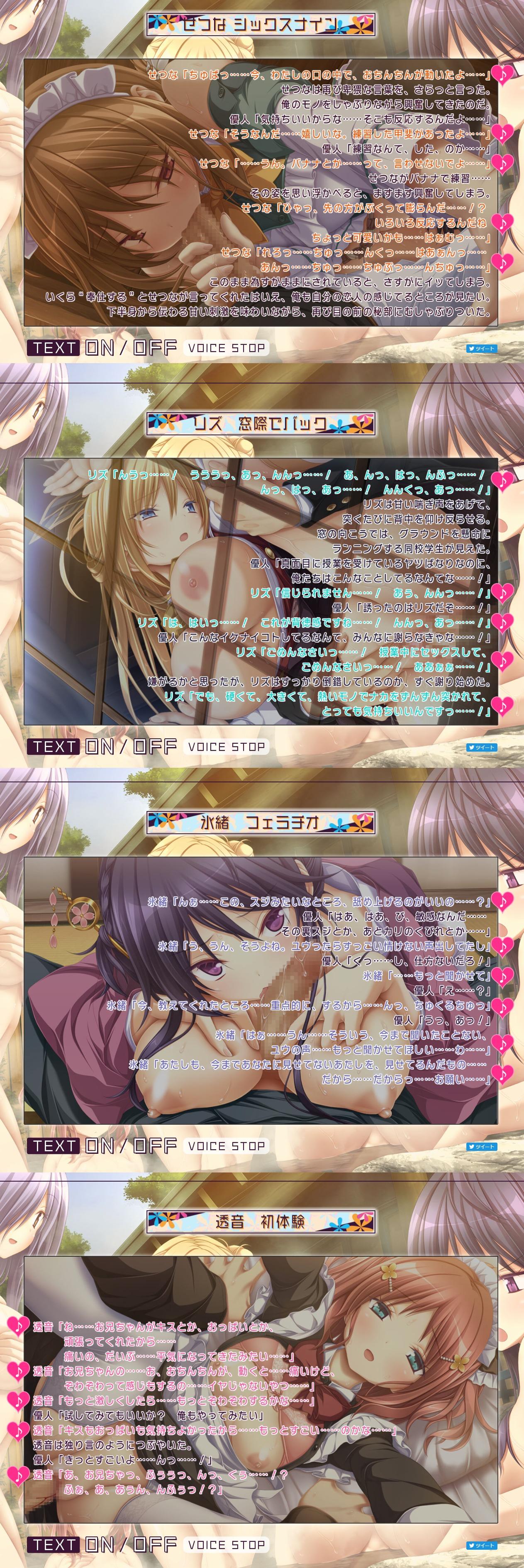 H_scene_digest|青春フラジャイル|Purple_software