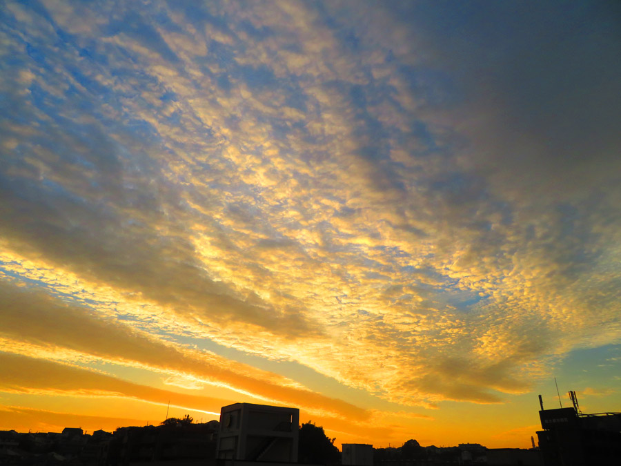 20,1106,夕空のうろこ雲1
