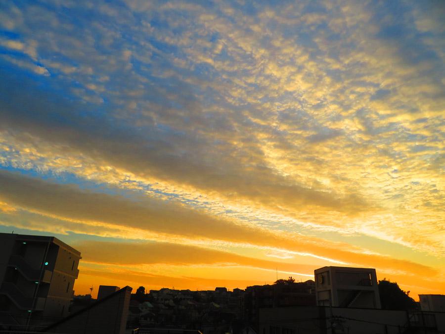 20,1106,夕空のうろこ雲2