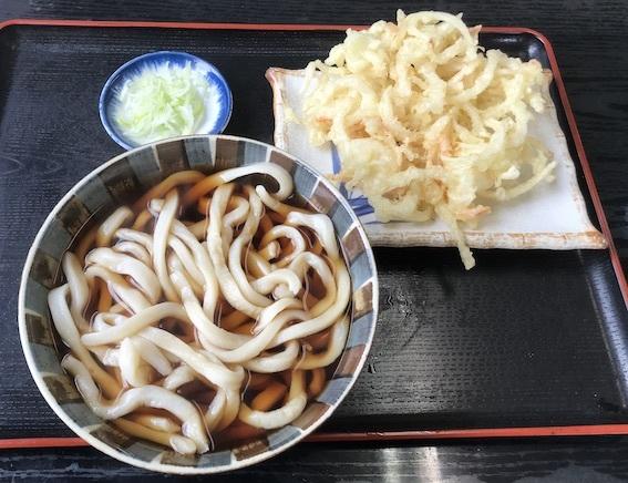 松の木天ぷらうどん 500