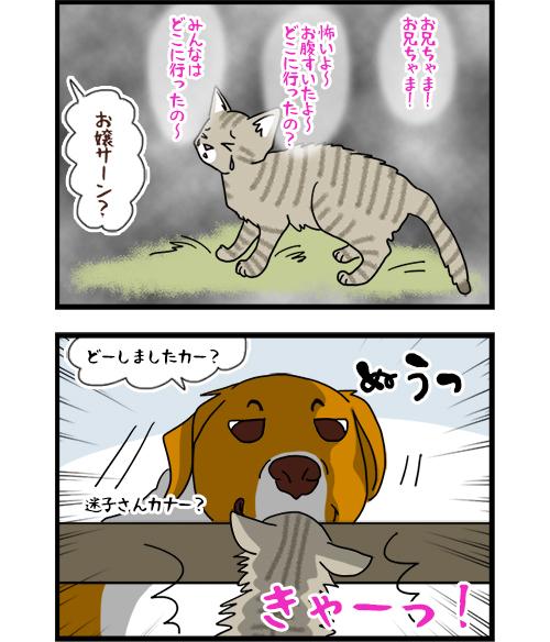 01042021_dogcomic_3A.jpg