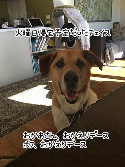 03052021_pic10.jpg