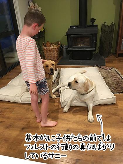 04012021_dogpic3.jpg