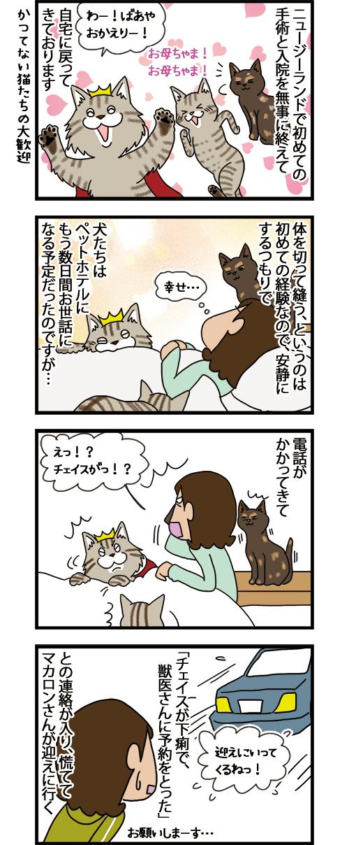 04052021_dogcomic_mini1.jpg