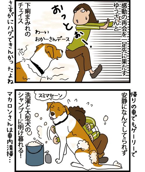 04052021_dogcomic_mini2.jpg