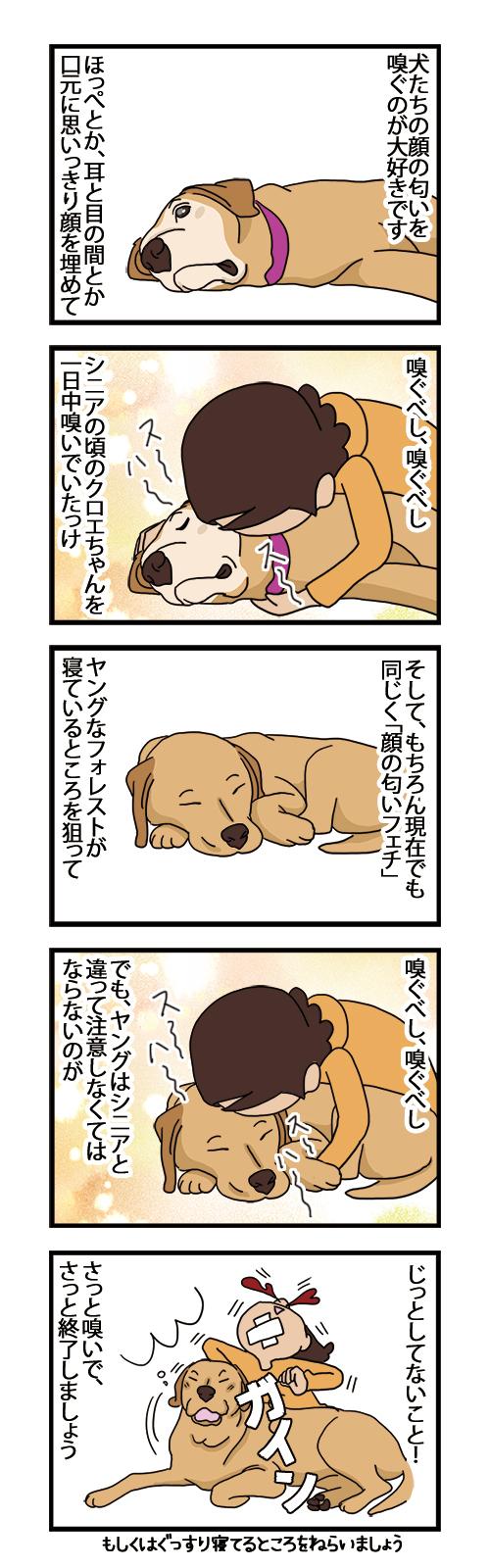 08012021_dogcomic.jpg
