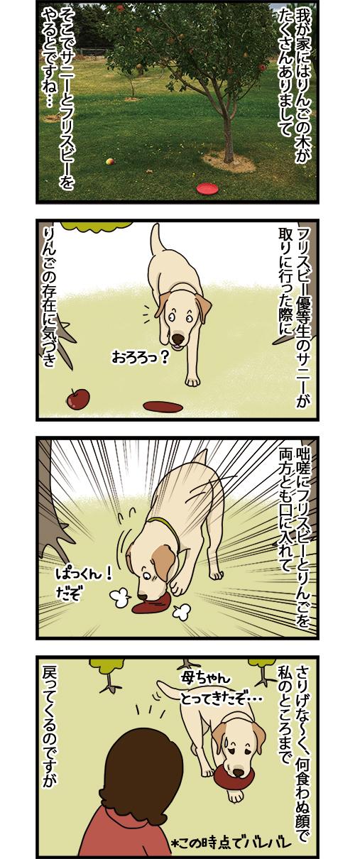 08032021_dogcomic_1.jpg