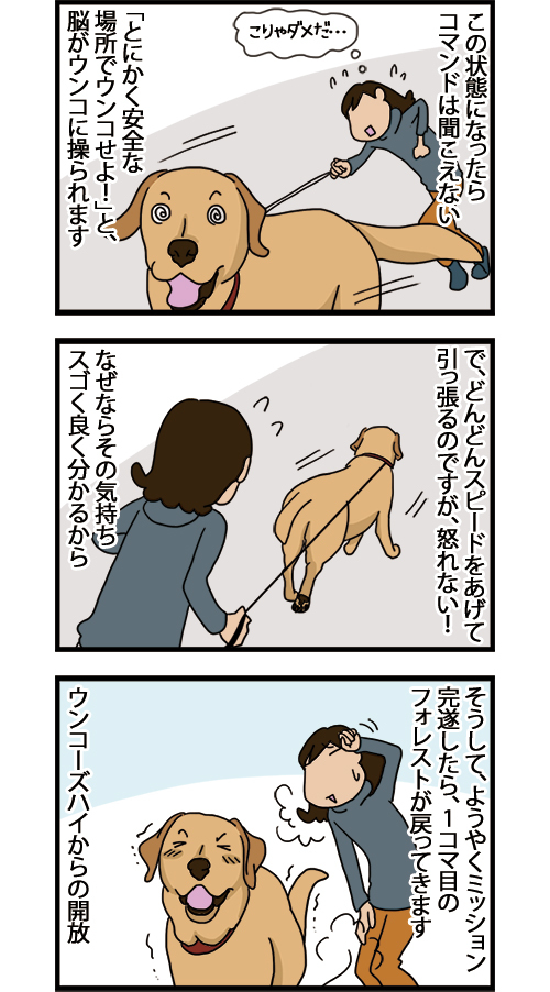 08062021_dogcomic_2.jpg