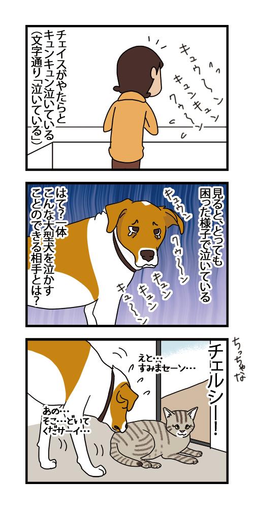 09012021_dogcomic.jpg