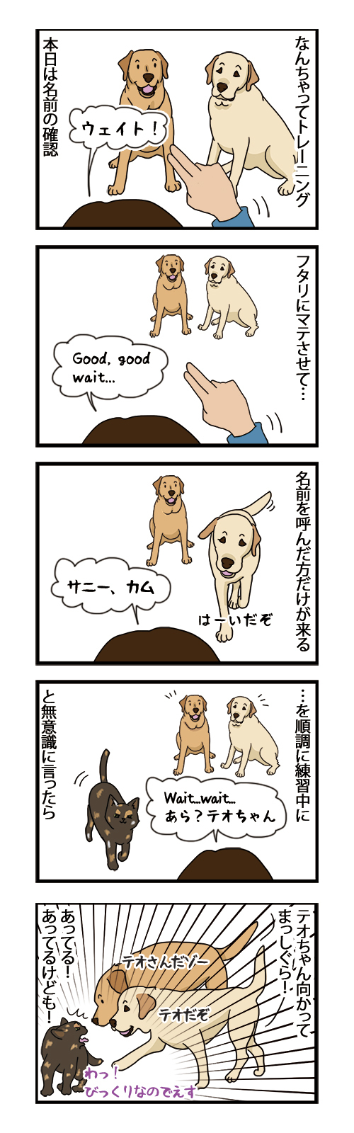 11022021_dogcomic.jpg