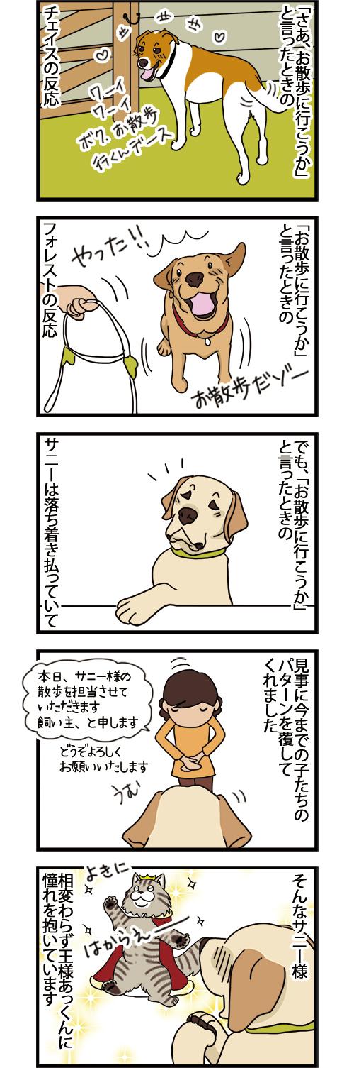 12012021_dogcomic.jpg