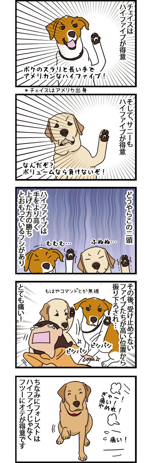14012021_dogcomic.jpg