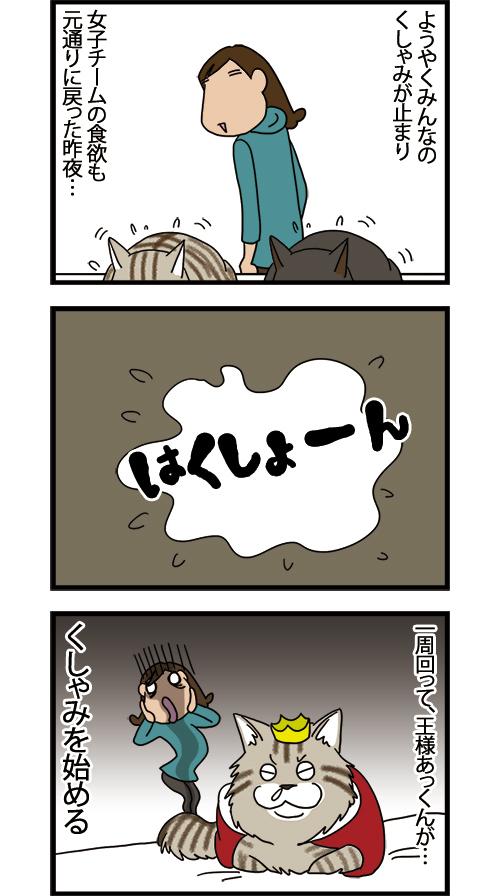 15042021_dogcomic_mini2.jpg