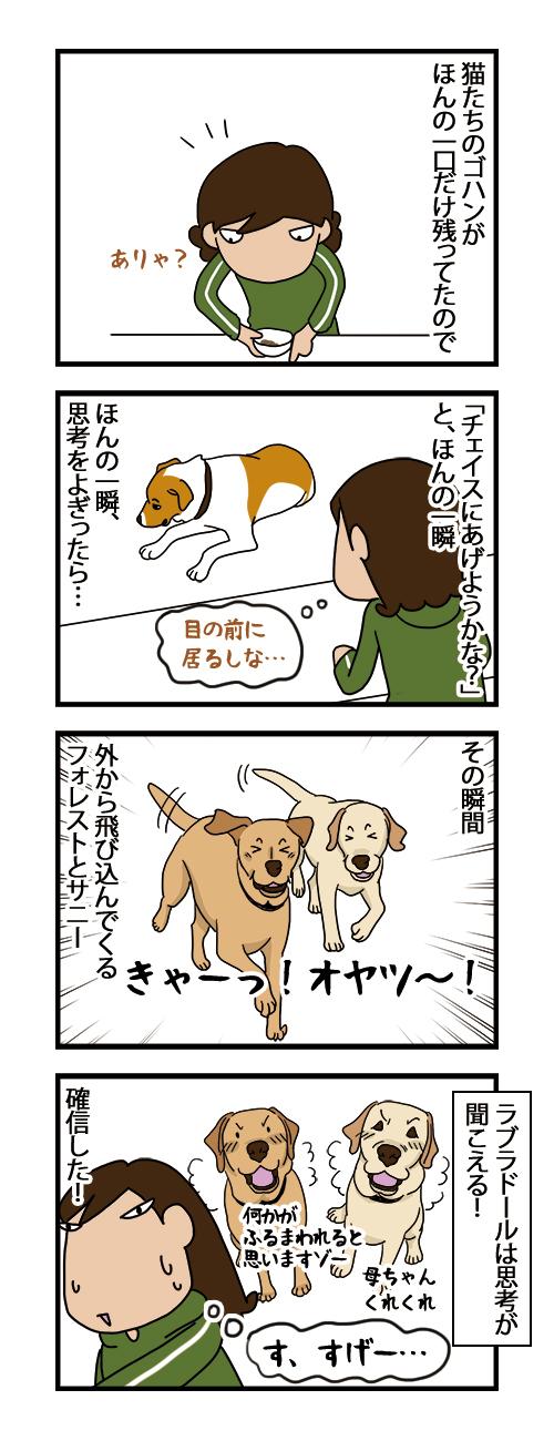 17022021_dogcomic.jpg
