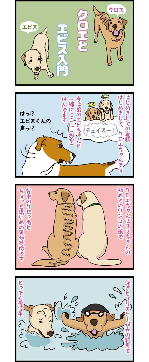 19032021_dogcomic_mini1.jpg