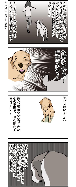 20042021_dogcomic2_mini1.jpg