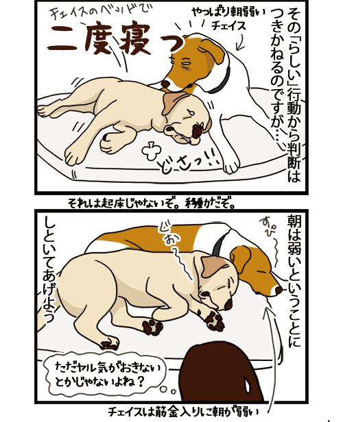 20052021_dogcomic_2.jpg