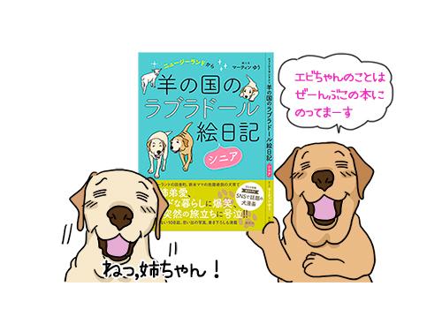 22032021_dog9.jpg