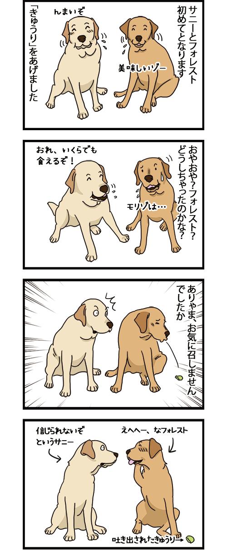 25022021_dogcomic_1.jpg