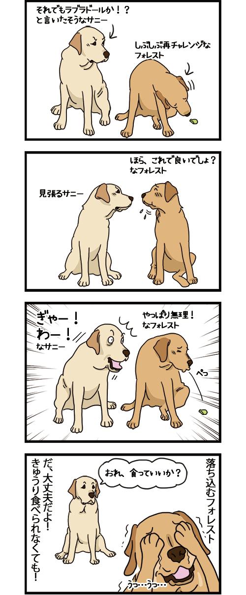 25022021_dogcomic_2.jpg