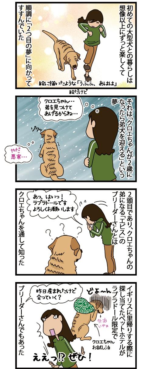 25052021_dogcomic_1.jpg