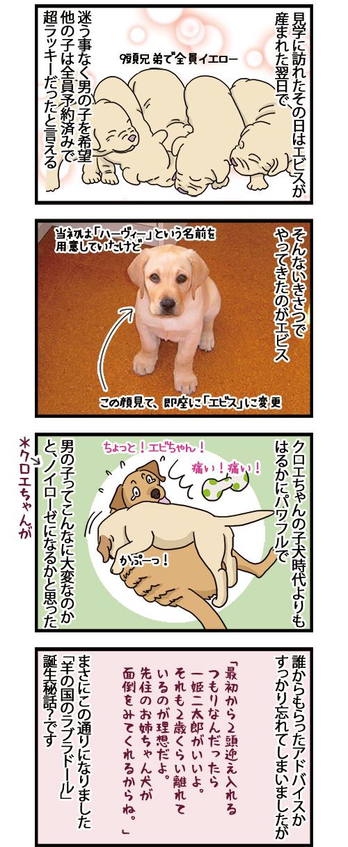 25052021_dogcomic_2.jpg