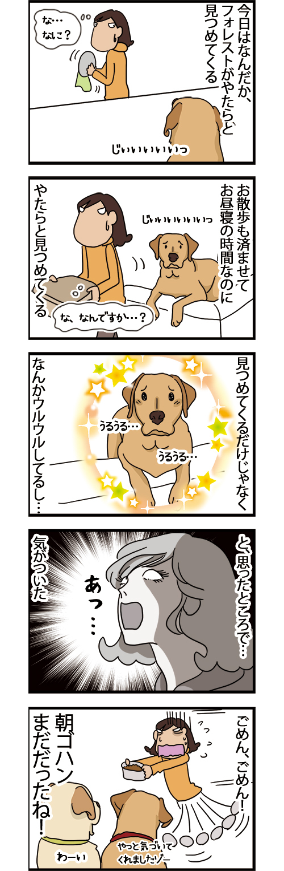 26122020_dogcomic.jpg