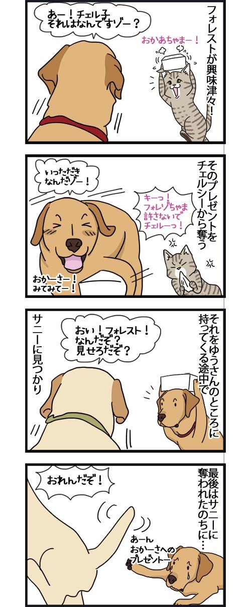 27042021_dogcatcomic2.jpg
