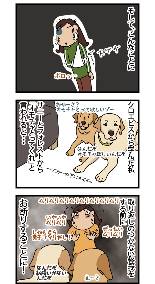 29012021_dogcomic2.jpg