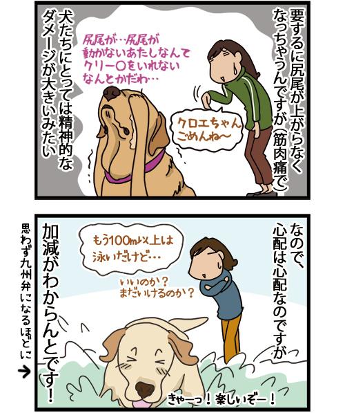 31032021_dogcomic_2.jpg