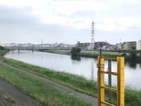 IMG_4317j.jpg