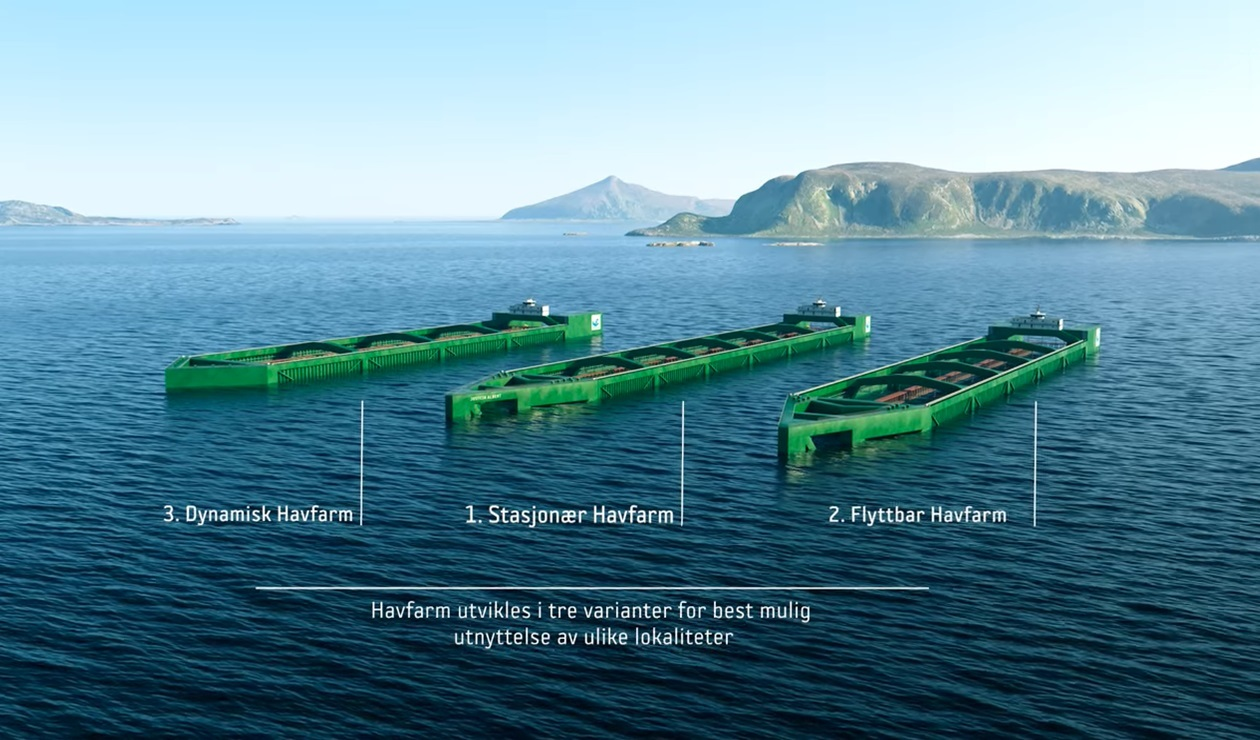 巨大養殖船を船で運搬-13