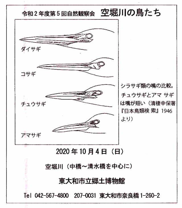 20201005-1a P1090329