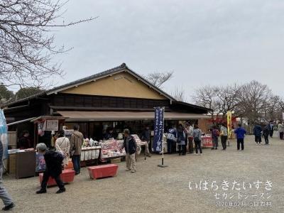 偕楽園内のお土産屋さんは観光地っぽいけど営業は期間限定。