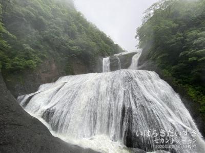 袋田の滝 観瀑台:降雨の影響で水量が1.3倍くらい!
