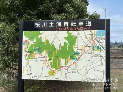 筑波鉄道線廃線跡を利用した、「つくばりんりんロード」。