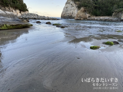 潮が引くと、かつての砂浜が顔を出します。