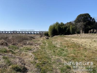 伊奈氏屋敷跡の敷地からは東北新幹線が見える。