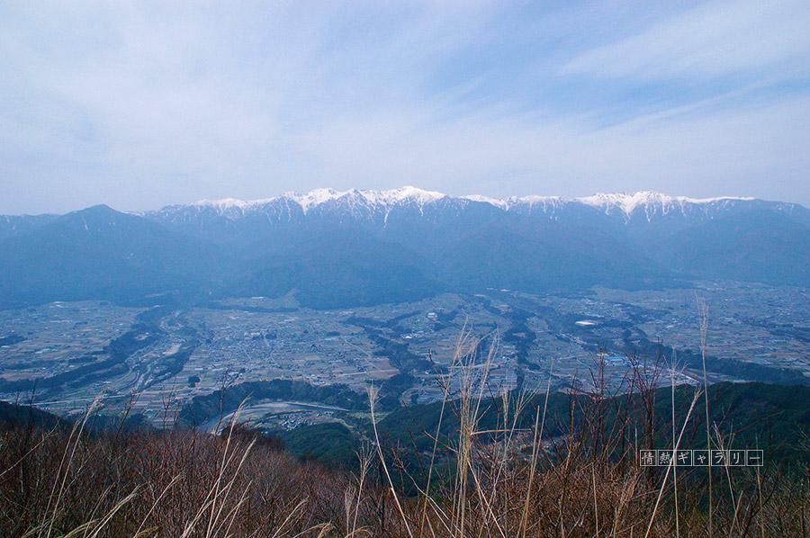 200530_ina.jpg