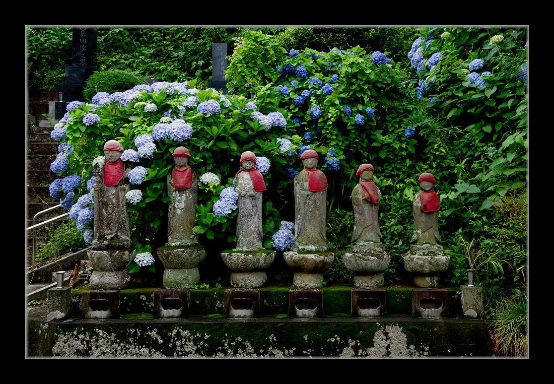六地蔵に紫陽花