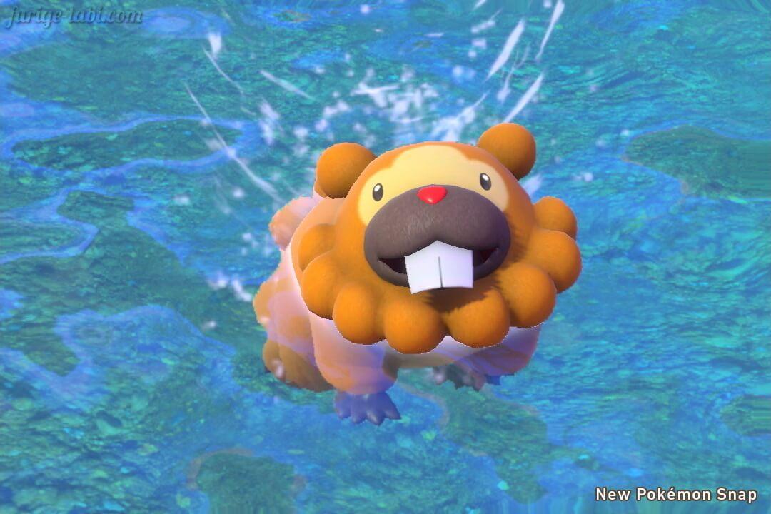 Newポケモンスナップ スクリーンショット フロレオ自然公園 昼 泳ぐビッパ