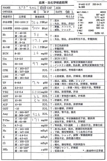 ポポ血液検査20200425